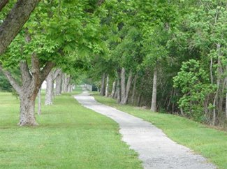 Walking trail at The Grove